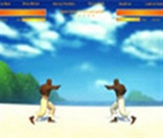 Play Capoeira Fighter 1